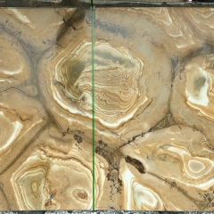 Yellow Palomino Quartzite Countertops Slabs