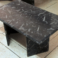 Natural Fossil Stone Tables