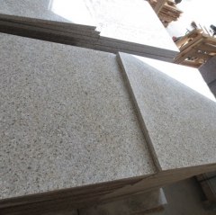 Xiamen Granite Tiles Slabs